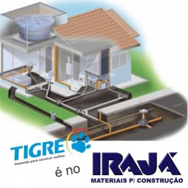 Tigre é no Irajá